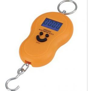 Electronic scale to measure bags