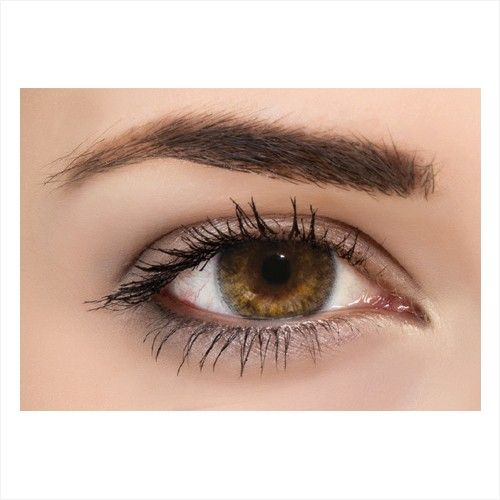 00af82932311 Versace Elegance Brown Cosmetic Contact Lenses, With Solution, KOP085 | KSA  | Souq
