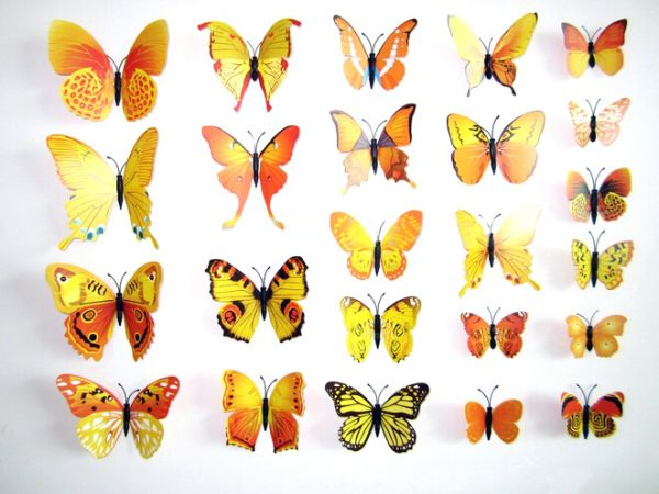 سوق | تسوق 3D butterflies wall decoration - Yellow and Orange | قطر