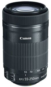 Canon EF-S 55-250 IS STM SLR Lens, CAN55250