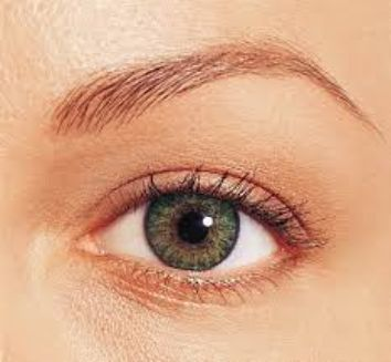 Fresh Look Color Blend Cosmetic Contact Lenses Green Price