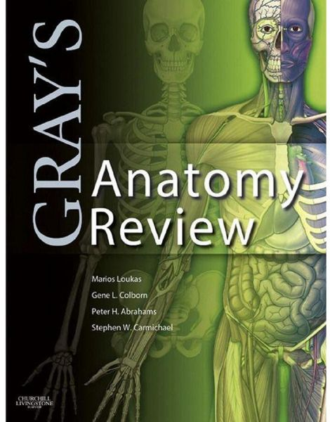 Gray\'s Anatomy Review by Marios Loukas - Paperback | Books | kanbkam.com