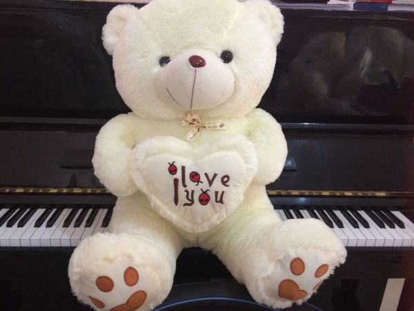 Lovly and Pretty Teddy Bear with Heart Design (Hign-end Stuffed Toys)