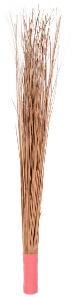 Broom Kharata Jhadu, Brown