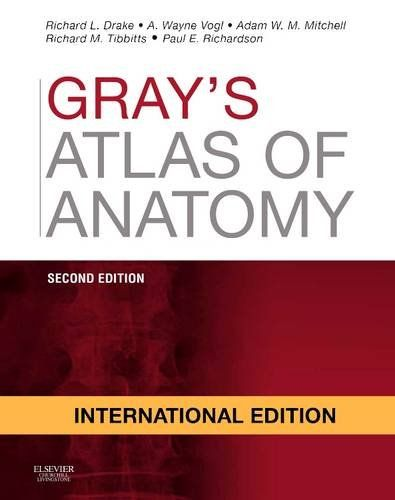 Gray\'s Atlas of Anatomy | Books | kanbkam.com