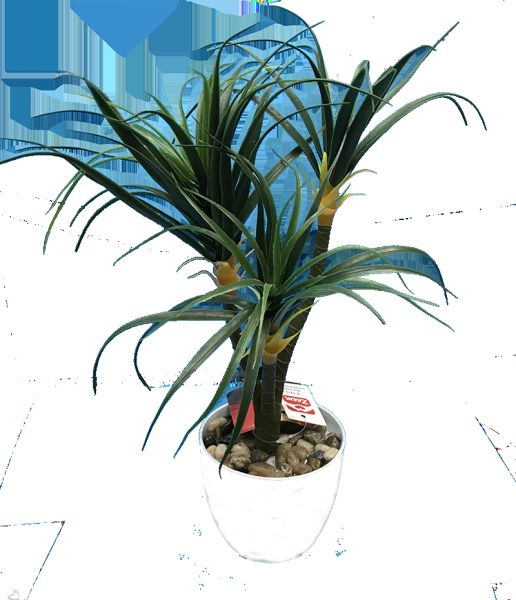 Artificial Palm Tree With White Vase Flowers Kanbkam