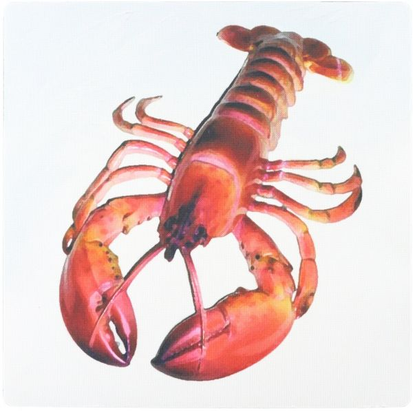 3dRose LLC 8 x 8 x 0.25 Inches Lobster Mouse Pad (mp_4480_1)