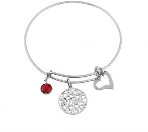 Women Stainless Steel Birthstone Pendant Bracelet Bangle