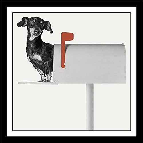Souq | FRAMED Dachshund Weiner Dog - You\'ve Got Mail by Jon Bertelli ...