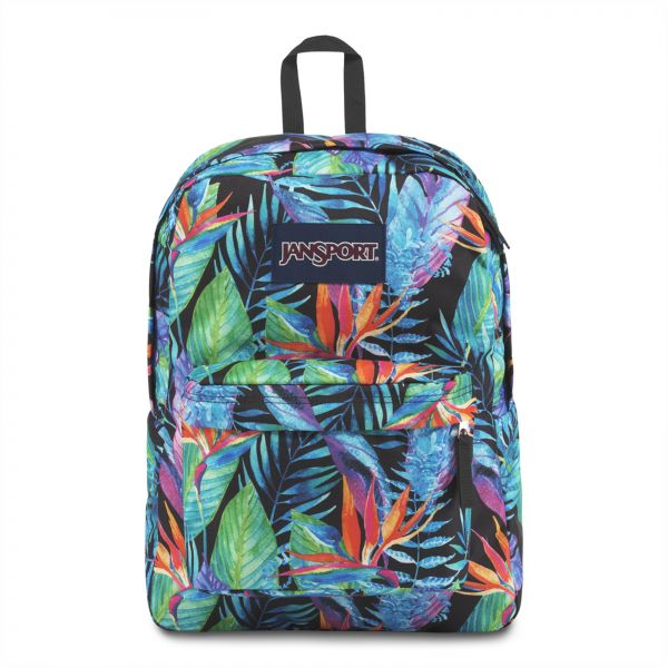 51c11370df3d Jansport Backpacks  Buy Jansport Backpacks Online at Best Prices in ...