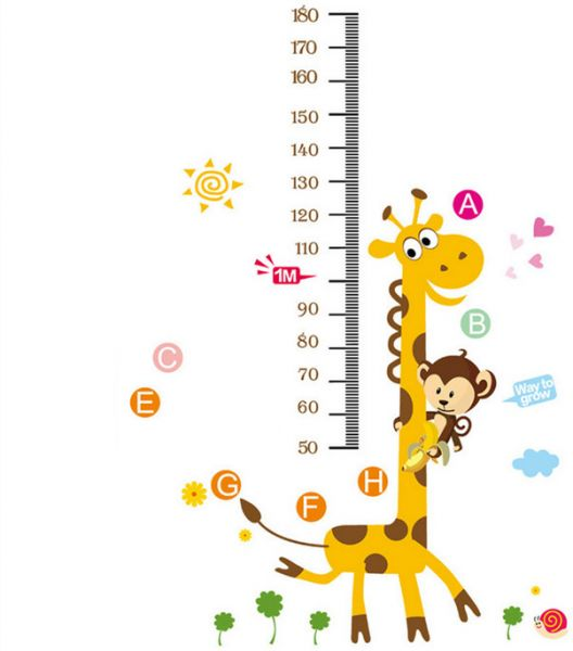 Jungle Zoo Animal Monkey Climbing On Giraffe Growth Chart Nursery