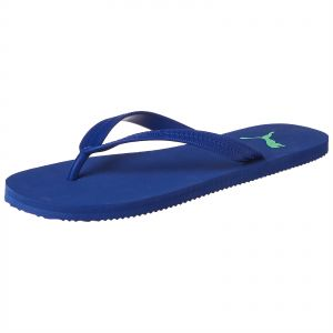 6bc834c1d9eb8 Puma Thong Slippers for Men - Blue
