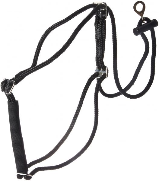 Coastal Pet Products Dcp603320md Nylon Walk Right Control Dog