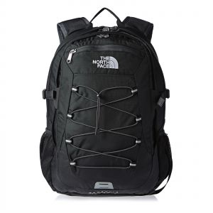 268a3847b40d The North Face Borealis Classic Backpack