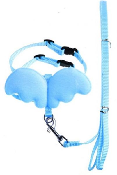 Cute Angel Wing Pet Dog Leashes and Collars Set Puppy Leads for Small Puppy Cat Adjustable Harness Pet Accessories